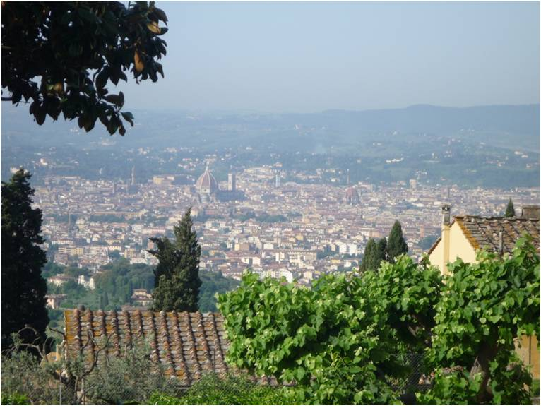 View of Florence from above